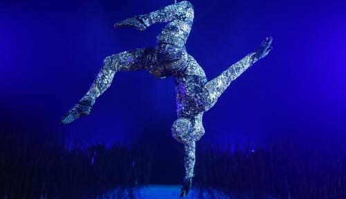 cirque-du-soleil-totem-crystal-man