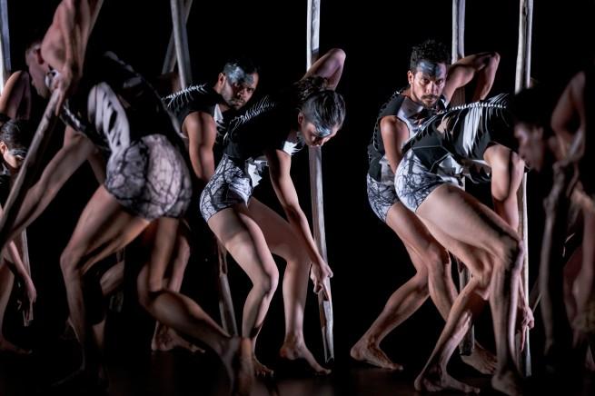 Sheoak lore - Bangarra ensemble - Photo by Jeff Tan
